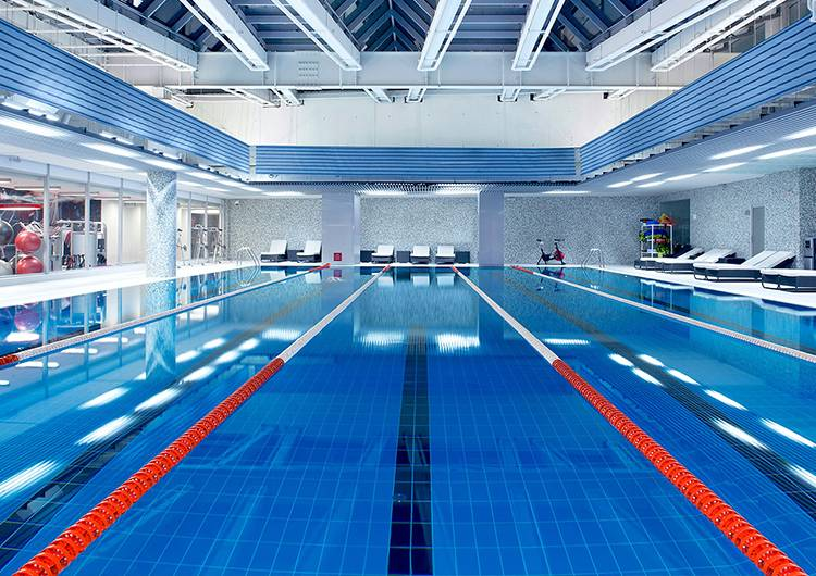 Рейтинг фитнес клубов москвы с бассейном 2020 лучше ночные клуб в санкт петербурге