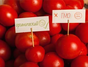 ГМО действительно ли вредны искусственные продукты