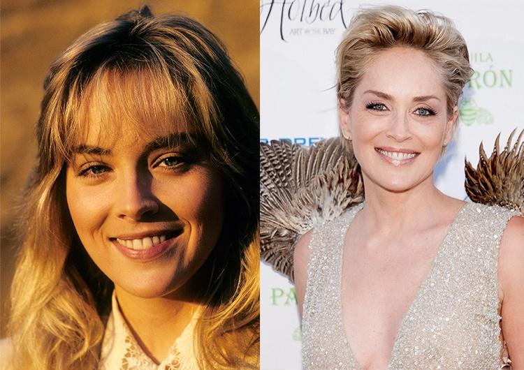 """Результат пошуку зображень за запитом """"Sharon Stone тогда сейчас"""""""